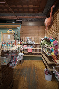 Web-Treehouse Toy Store-LB