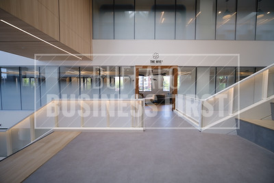 Web-D'youville Hub First Look-LB