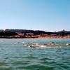 Swim with Pedro at Crissy Field