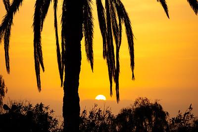 Sunrise at Tenerife