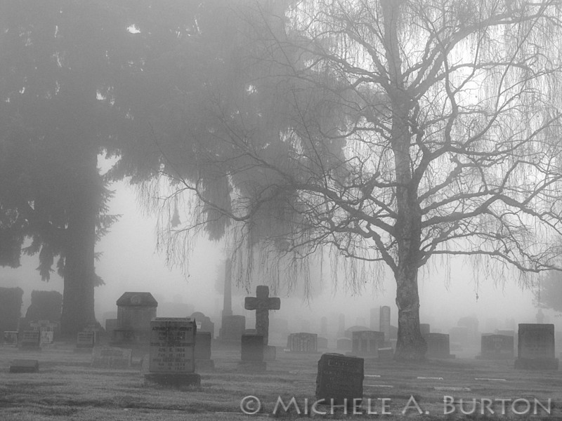 Lakeview Cemetery as seen on a foggy winter morning