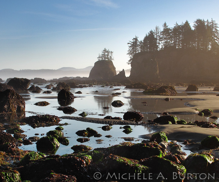Early morning at Cape Alava, Washington. Low tide reveals tidal pools around the sea stacks.