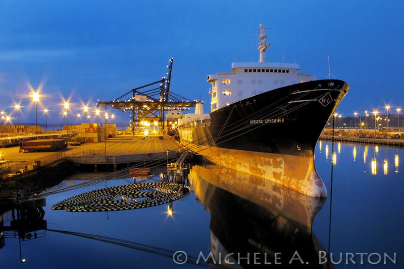 Horizon Consumer docked at Port of Tacoma
