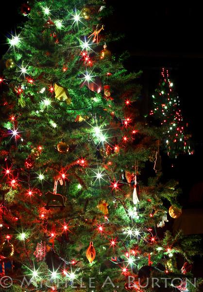 Christmas Tree at Night<br /> <br /> December 17, 2012