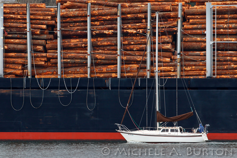 Sailboat and Log Ship<br /> <br /> Port of Olympia<br /> Olympia, WA <br /> <br /> February 20, 2015