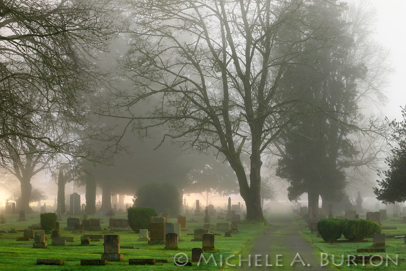 Foggy Night<br /> <br /> Odd Fellows Cemetery<br /> Tumwater, WA<br /> <br /> January 6, 2015