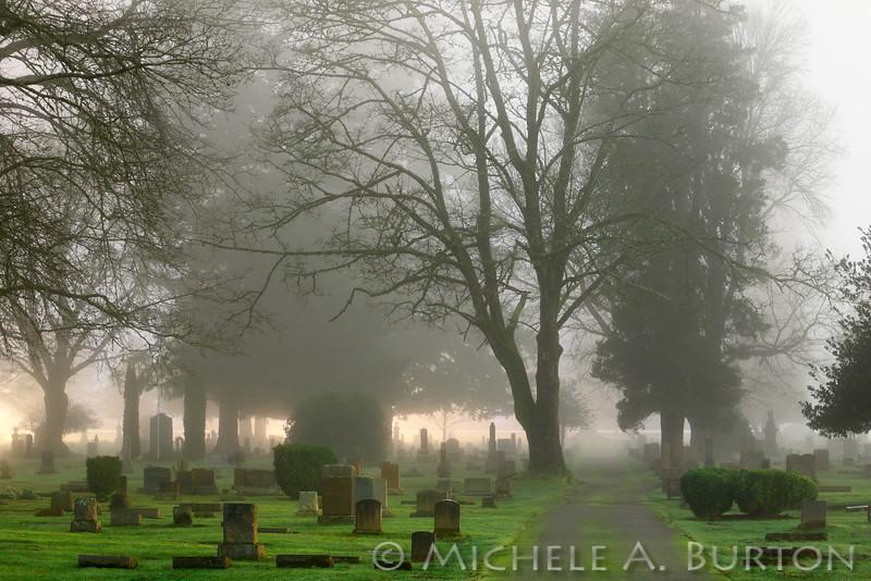 Foggy Night<br /> <br /> Odd Fellows Cemetery<br /> Tumwater, WA<br /> <br /> January 6, 2015