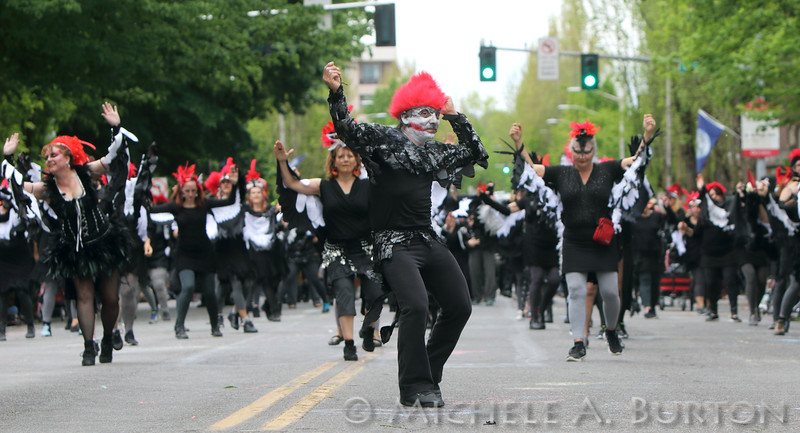 Samba Olywa dancers and percussion artists parade fancifully through the streets of Olympia, WA at the 2016 Procession of the Species