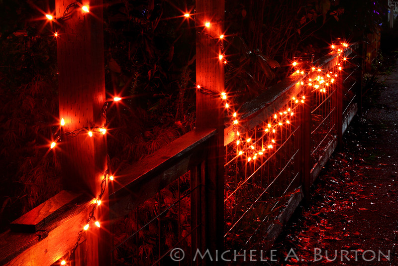 Halloween Lights<br /> South Capitol Neighborhood<br /> <br /> Olympia, WA<br /> October 30, 2015