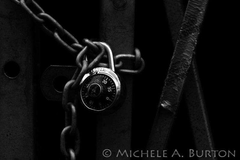 "Still Life of a Lock  To Learn more about the process of making this image, <a href=""http://micheleburton.blogspot.com/2012/10/photo-of-week-october-14-2012.html"">click here</a>"