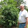 3. Sherry's Dad with his tomatoes