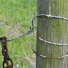 Fence post and wire