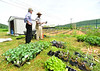 Jabari Jones, a farm manager for SUSU CommUNITY Farm, in Brattleboro, Vt., talks about plants with U.S. Congressman Peter Welch (Vt-D) during a visit on Friday, June 4, 2021. SUSU CommUNITY Farm is a BIPOC-led community farm that offers access to safe and affirming food.