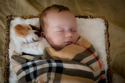 coby-newborn-051