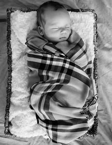 coby-newborn-061