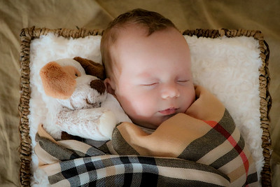 coby-newborn-049