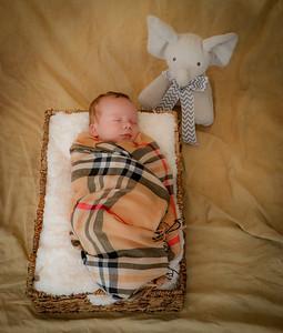 coby-newborn-054