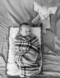 coby-newborn-055