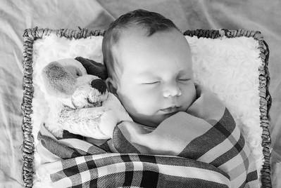 coby-newborn-050