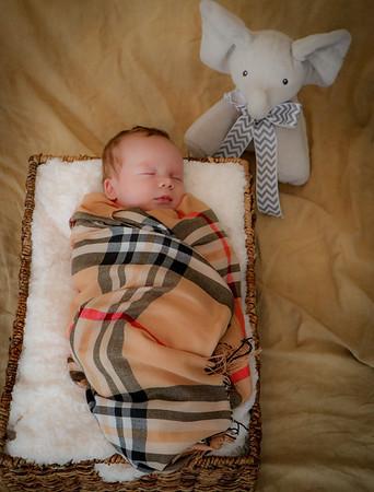 coby-newborn-053