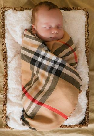 coby-newborn-044