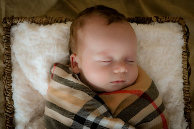 coby-newborn-047