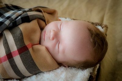 coby-newborn-059
