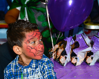 Face Painting and Photography for small parties