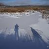 Long shadows in winter sun.
