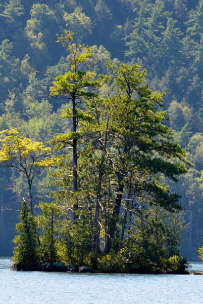 Island on Lake George, Adirondack State Park, NY