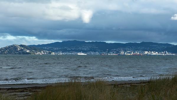 20180531 Stormy day in Wellington  _JM_0440 b