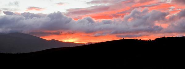 20110524 0721 Te Marua sunrise _MG_8530 a b
