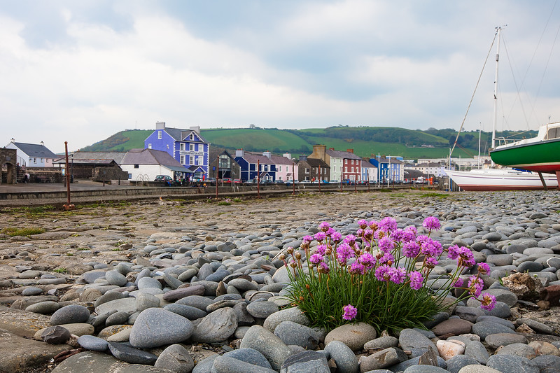 Colourful Aberaeron