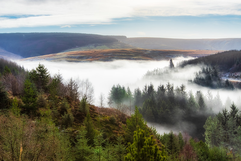 Rolling Mists