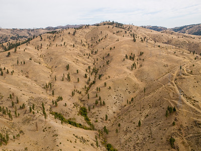 Wenatchee Complex, Okanogan Wenatchee National Forest, WA, 2012