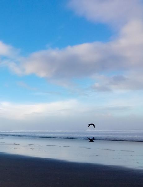 Martha Clarkson-Glide