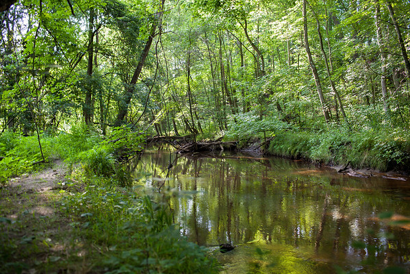 Save Maple Ridge J.R. Dominy JerseyPix Wenonah New Jersey Landscape Canon 35L