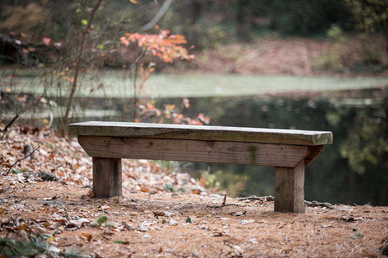 """Bench at """"Davis' Pond"""" (or Dilk's Pond or even Jefferson Pond ... depending when you grew up in Wenonah)"""