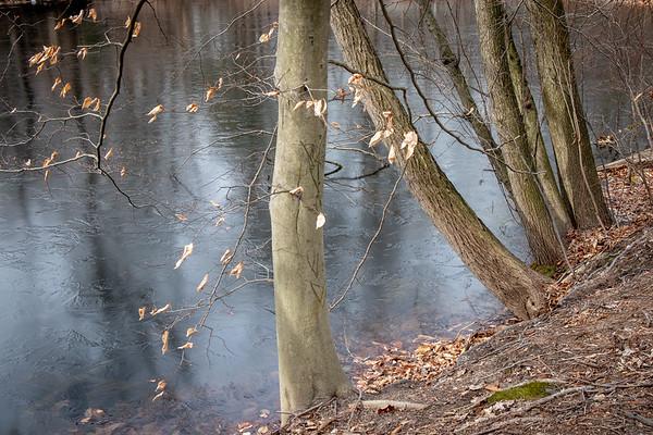 Last of the Ice on Dilk's Pond