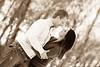 IMG_1010 Engaged
