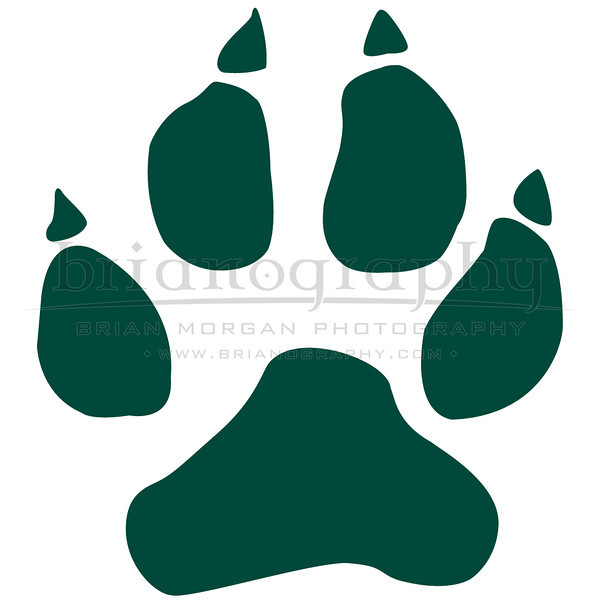 Paw_GREEN_SQUARE