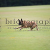 Brian_L_Morgan_20121012_BM63112