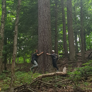 Samantha and Chelsea of NCC hug an Eastern White Pine in the ravines, in Area 5 (Photo by Gerry McKenna)