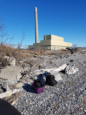 Wesleyville powerhouse as viewed from shoreline at beach access gate , in Area 1 (Photo by Gerry McKenna)