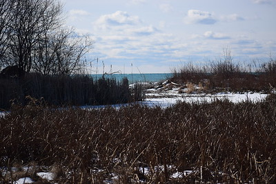 Wesleyville East Marsh view south to outlet. , in Area 1 (Photo by Gerry McKenna)
