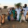 084 Timbuktu