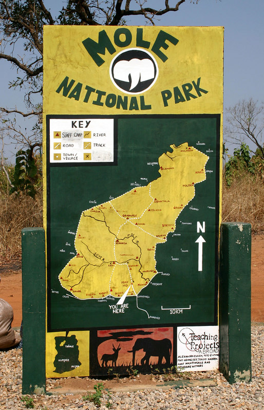 060 Mole National Park