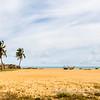 On the Coastal Route Ouidah-Cotonou, Benin