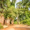 Forêt Sacrée de Kpassè (Kpasse's Sacred Forest), Ouidah, Togo