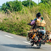 Life chicken being transported on the back of a motorcycle driving to Ouidah, Benin